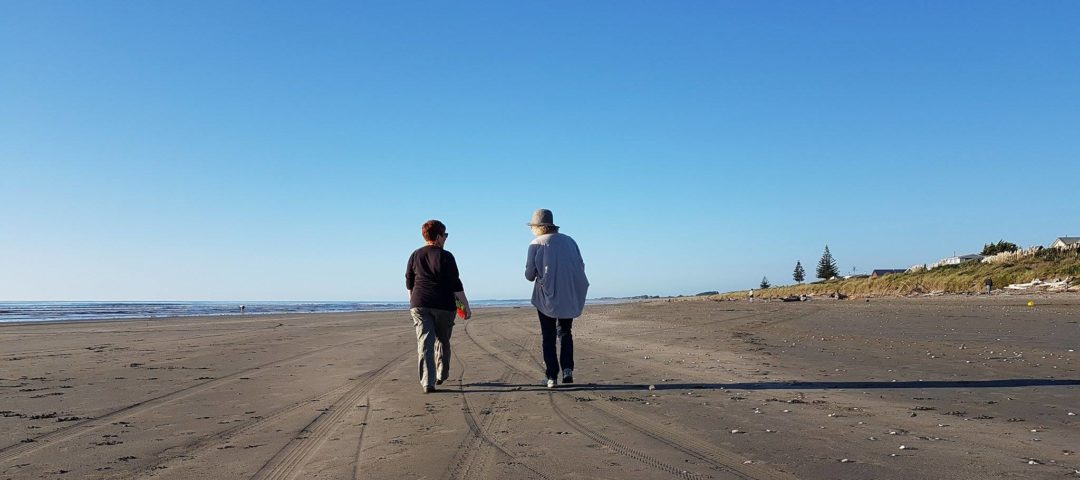 Kapiti Coast Guided Highlights Tour