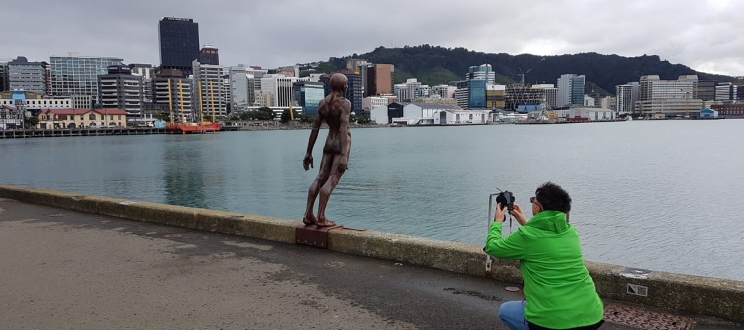 Wellington art galleries private tour