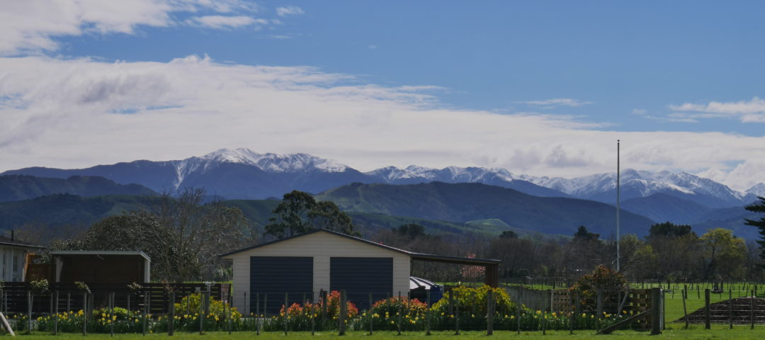 Wairarapa Personally Guided Tours