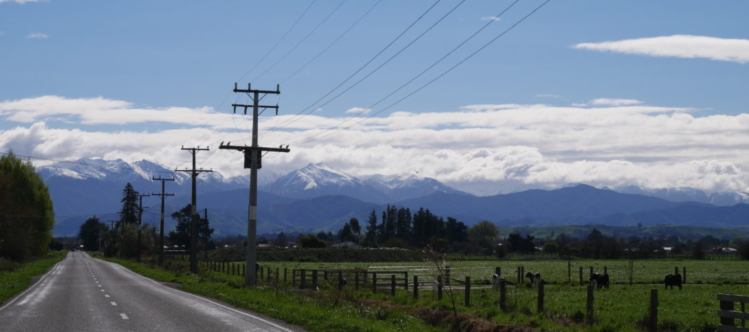 Private Tours Martinborough Greytown Featherston rural new zealand