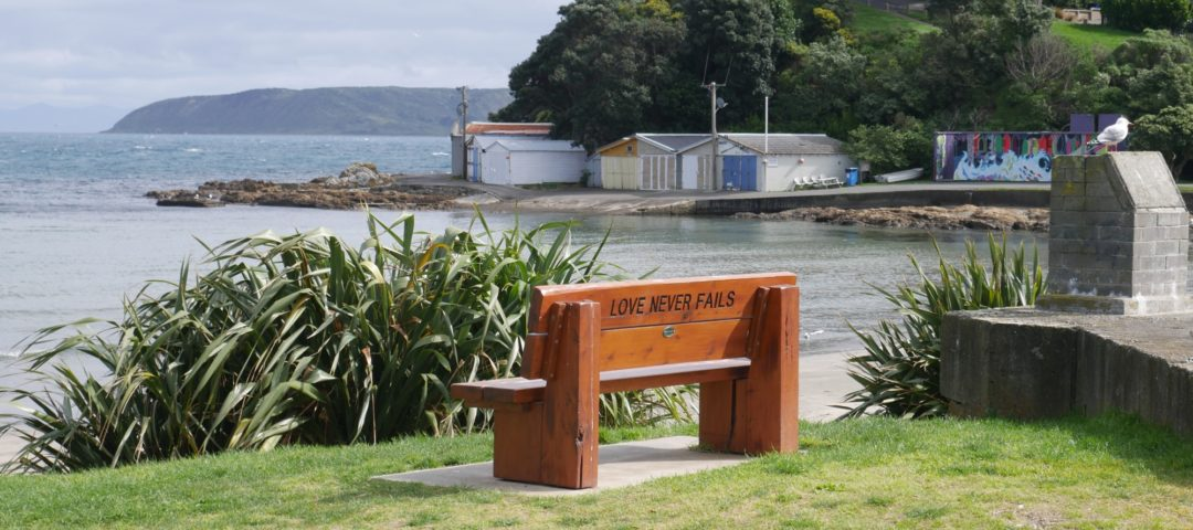 Private sightseeing day tours Wellington Beaches