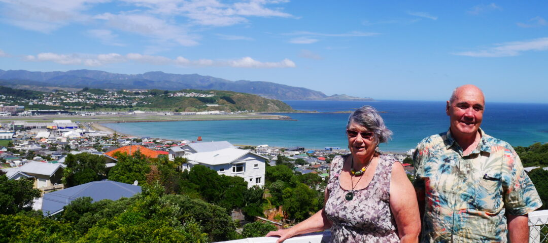 Wellington art tours in Lyall Bay