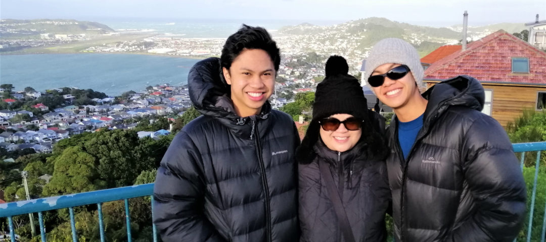 Mt Victoria Lookout Wellington private day tours Lyall Bay and airport Child friendly