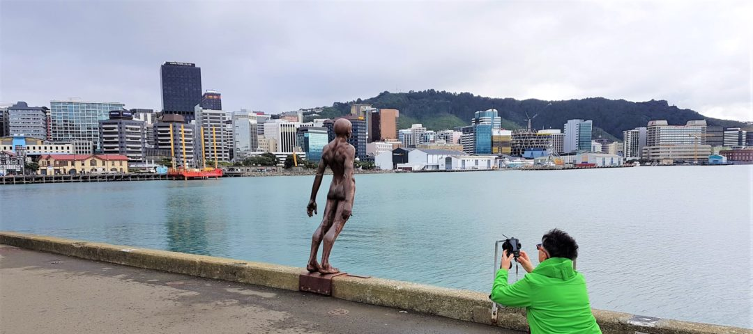Wellington art galleries private tour
